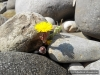 4blog-2013-04-01_13-58-51