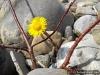 4blog-2013-04-01_14-04-12