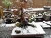 4blog-2014-03-23_12-32-32-jpg