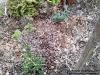 4blog-2014-02-08_15-19-42-jpg