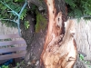 4blog-2012-08-24_17-32-42