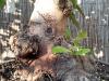 4blog-2012-09-14_18-01-37-jpg