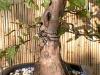 4blog-2011-09-22_17-39-10