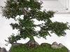 4blog-2011-10-14_19-27-32-jpg