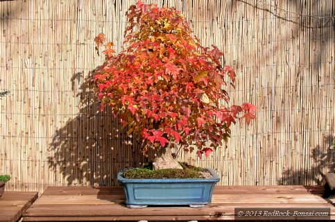 4blog-2011-10-30_13-53-45-jpg
