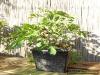 4blog-2012-09-15_17-43-59