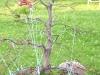 4blog-2011-06-15_20-11-52-jpg