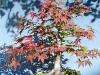 4blog-2014-09-07_15-47-09