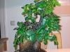 4blog-2012-04-18_21-35-41-jpg