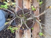 4blog-2012-04-13_16-59-28-jpg