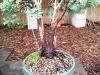 4blog-2012-04-13_16-53-54-jpg