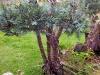 4blog-2012-09-04_19-24-03-jpg