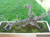 4blog-2011-07-05_19-22-12_29-jpg
