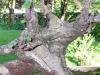 4blog-2011-07-05_19-22-26_31-jpg