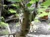 4blog-2010-08-12_07-49-12_6-jpg