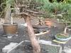 4blog-2010-10-04_20-38-03
