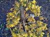 4blog-2012-01-22_15-41-16