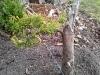 4blog-2012-03-17_17-24-50