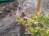 4blog-2012-03-17_17-25-06