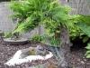 4blog-2012-09-04_19-32-35