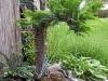 4blog-2012-09-04_19-32-55