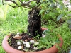 4blog-2010-08-28_07-45-58-jpg