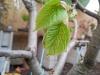 4blog-2012-04-18_19-16-30