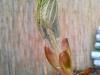 4blog-2012-04-19_17-45-16