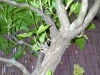 4blog-2012-04-19_17-49-42