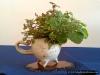 4blog-2012-03-10_14-00-58
