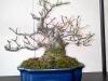4blog-2012-03-10_14-22-54