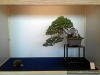 4blog-2012-03-10_14-23-51