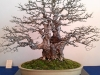 4blog-2012-03-14_20-34-55