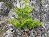 4blog-2012-05-27_16-10-45