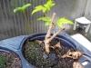 4blog-2012-09-04_19-28-50