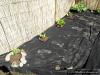 4blog-2012-04-22_15-33-51