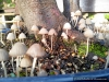 4blog-2012-08-12_19-04-40