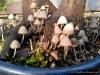 4blog-2012-08-12_19-04-50