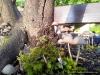 4blog-2012-08-12_19-05-30