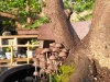 4blog-2012-08-12_19-07-05