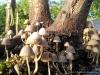 4blog-2012-08-12_19-07-42