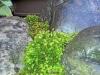 4blog-2012-05-14_19-47-15