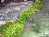4blog-2012-05-14_19-47-25