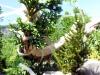 4blog-2012-05-26_15-30-16