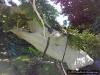 4blog-2012-05-26_15-49-17