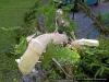4blog-2012-05-26_15-49-33