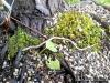 4blog-2012-06-16_19-27-47
