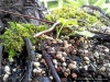 4blog-2012-06-16_19-27-53
