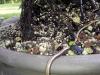 4blog-2012-06-16_19-41-53