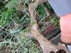 4blog-2011-06-26_19-55-12